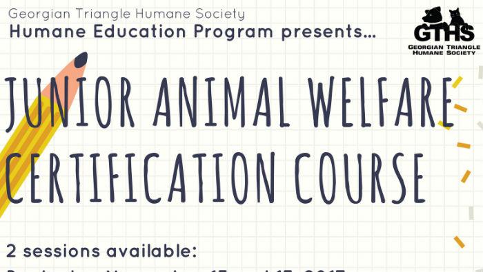 Junior Animal Welfare Certification Course